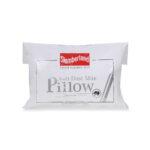 SL_ADM_Pillow(S)6